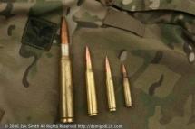 50-BMG-.338-Lapua-.308-5.56-NATO
