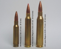 Anti-personnel_sniper_cartridges